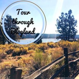 Tour Through Blogland Award